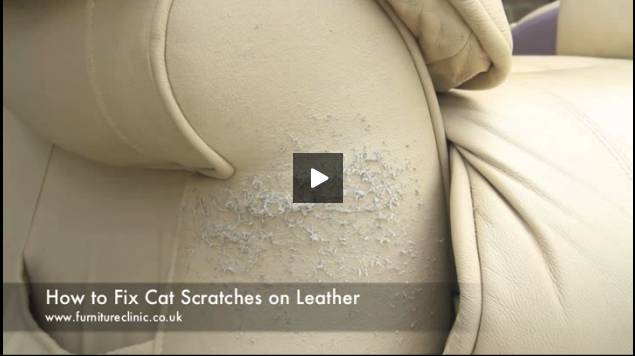 How to repair cat scratches on leather guide video