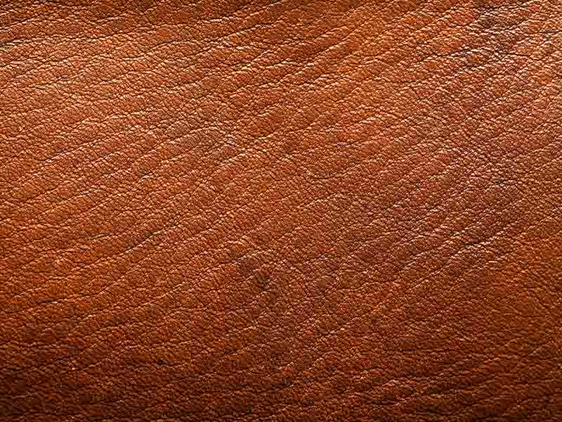 Furniture Clinic Specialists In Leather Repair Cleaning
