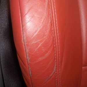 Scuffs/Scratches on Non-Absorbent Leather (Small)